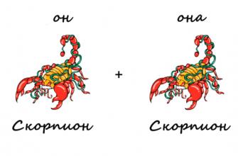 Совместимость скорпионов: Главная