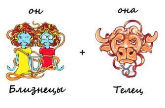 Изображение_совместимость близнецы и телец