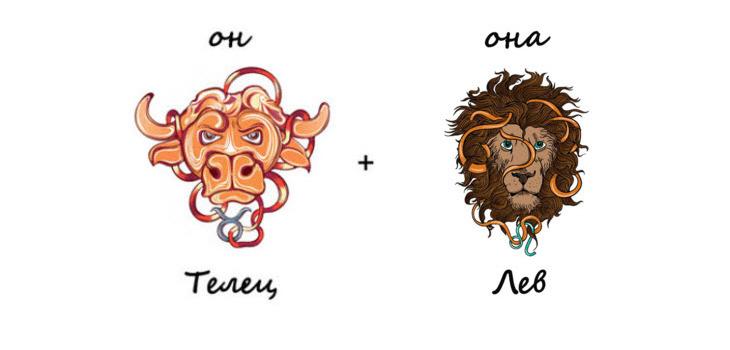 Изображение_совместимость тельца и льва